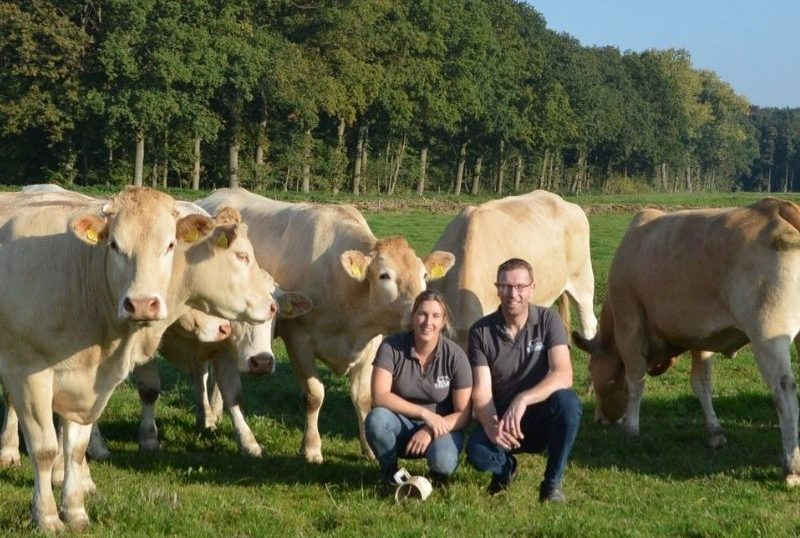 luxe rundvlees kopen twee sterren beter leven rund de leentjeshoeve horssen land van maas en waal druten nijmegen